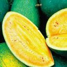 Sweet Siberian Yellow Watermelon