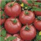 Brandymaster F1 Tomato