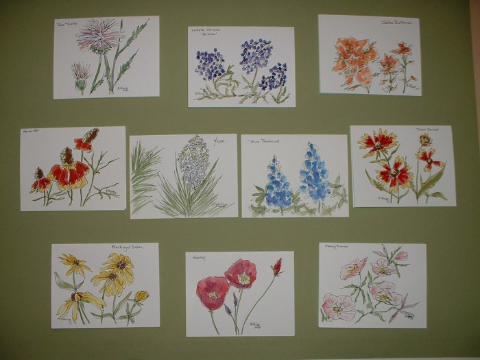 WILDFLOWER NOTECARDS  by Maren Phillips
