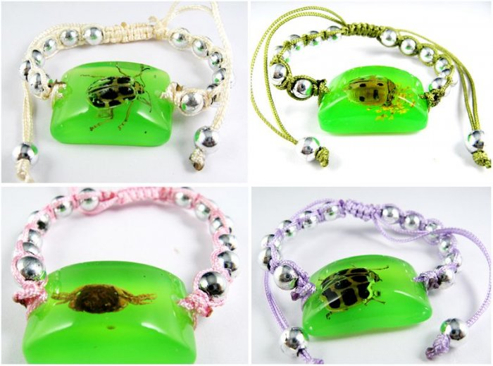 Wholesale Lot 6 Real Insect Bug Charm Amber Bracelets
