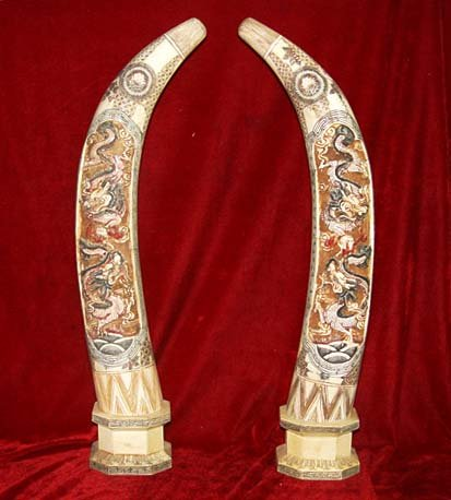 Nice Old Bone Art Handicraft Two Dragon Play Sun Design Pair Tooth