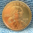 "2008-D Sacagawea Dollar. ""Choice BU"""