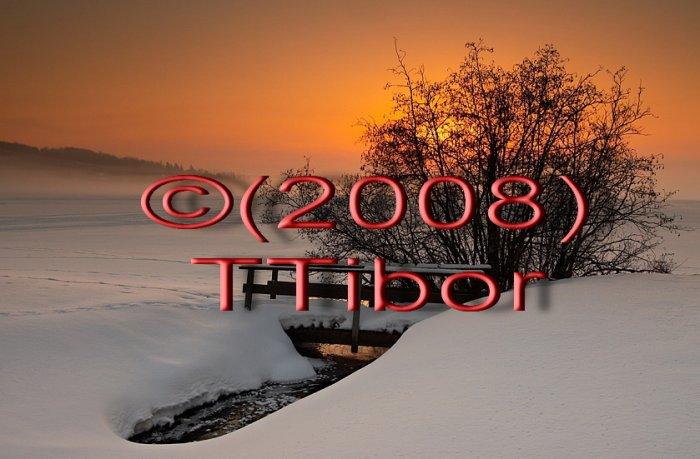 Winter*49*