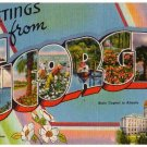 GEORGIA large letter linen postcard Tichnor