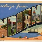 INDIANA large letter linen postcard Teich