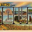 IOWA large letter linen postcard Teich