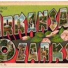ARKANSAS OZARKS large letter linen postcard Teich