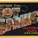 HOT SPRINGS National Park, Arkansas large letter linen postcard Teich