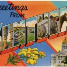 KENTUCKY large letter linen postcard Colourpicture