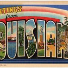 LOUISIANA large letter linen postcard Teich
