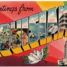 LOUISIANA large letter linen postcard Colourpicture