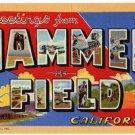 HAMMER FIELD, California large letter linen postcard Teich