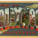 HOLLYWOOD, California large letter linen postcard Teich