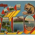 LAKE TAHOE, California large letter linen postcard Metropolitan