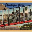 RIVERSIDE, California large letter linen postcard Teich