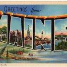 MAINE large letter linen postcard Teich