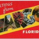LARGO, Florida large letter linen postcard Tichnor