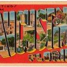ST. AUGUSTINE, Florida large letter linen postcard Tichnor