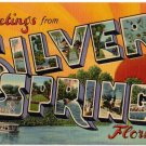 SILVER SPRINGS, Florida large letter linen postcard Teich