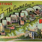 TALLAHASSEE, Florida large letter linen postcard Teich