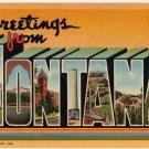 MONTANA large letter linen postcard Teich