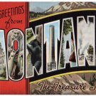 MONTANA large letter linen postcard Kropp