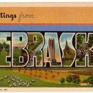 NEBRASKA large letter linen postcard Teich