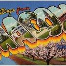 MACON, Georgia large letter linen postcard Teich