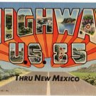 HIGHWAY U.S. 85, New Mexico large letter linen postcard Teich