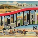 TUCUMCARI, New Mexico large letter linen postcard Teich