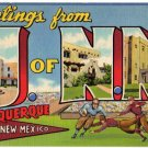 UNIVERSITY OF NEW MEXICO large letter linen postcard Teich