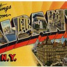 ALBANY, New York large letter linen postcard Tichnor