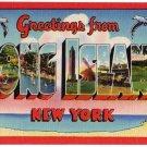 LONG ISLAND, New York large letter linen postcard Colourpicture