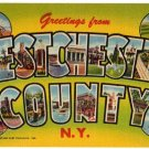 WESTCHESTER COUNTY, New York large letter linen postcard Teich