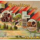 CANTON, Illinois large letter linen postcard Teich