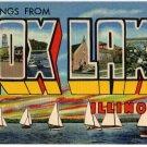 FOX LAKE, Illinois large letter linen postcard Teich