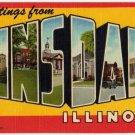 HINSDALE, Illinois large letter linen postcard Teich