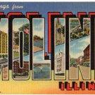 MOLINE, Illinois large letter linen postcard Teich