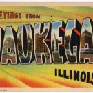 WAUKEGAN, Illinois large letter linen postcard Teich