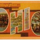 OHIO large letter linen postcard Dexter