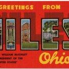 NILES, Ohio large letter linen postcard Teich