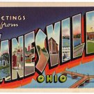 ZANESVILLE, Ohio large letter linen postcard Teich