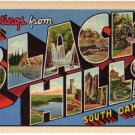 BLACK HILLS, South Dakota large letter linen postcard Teich