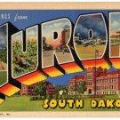 HURON, South Dakota large letter linen postcard Teich