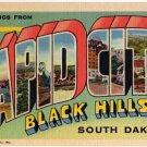 RAPID CITY, South Dakota large letter linen postcard Teich