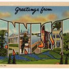 TENNESSEE large letter linen postcard Teich