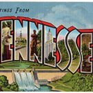 TENNESSEE large letter linen postcard Kropp