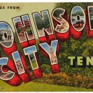 JOHNSON CITY, Tennessee large letter linen postcard Teich