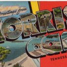 NORRIS DAM, Tennessee large letter linen postcard Kropp