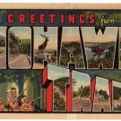 MOHAWK TRAIL, Massachusetts large letter linen postcard Teich